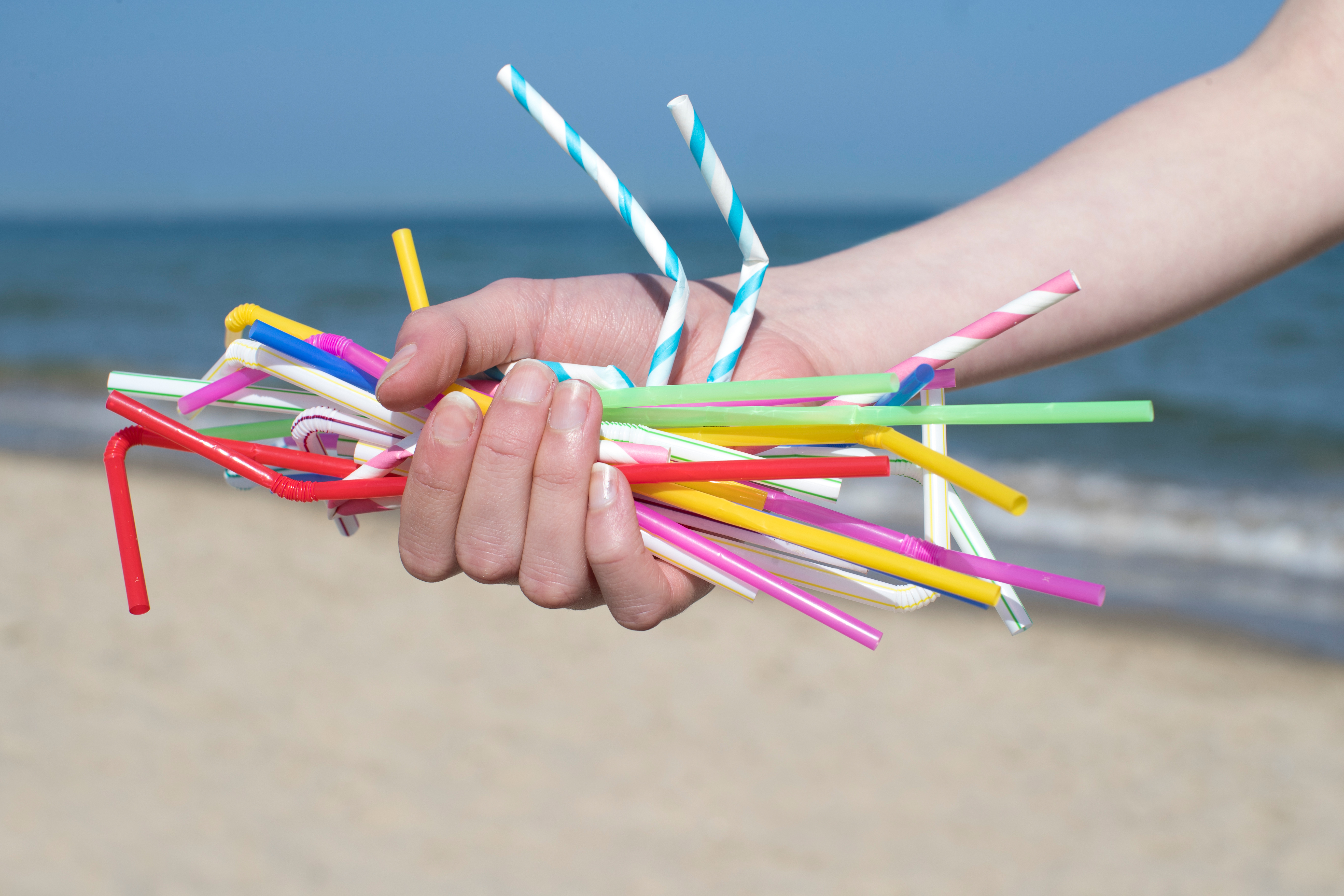 Plastic-Free Suction: the Straw