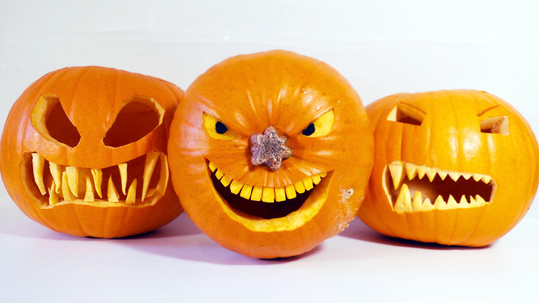Plastic-Free Pumpkin Puree