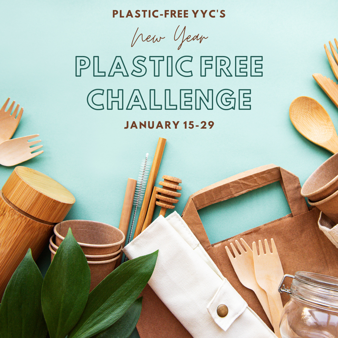 Poster describing the Plastic Free Challenge
